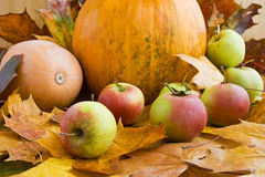 Apples and pumpkins on autumn leaves. Apples and two pumpkins on autumn leaves Stock Photography