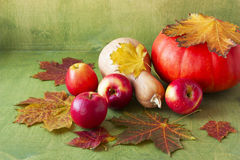 Apples, pumpkins and colorful maple leaves Royalty Free Stock Images
