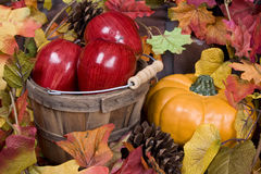 Apples, pumpkins and fall foaliage. Royalty Free Stock Photography
