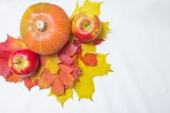 Apples, pumpkins and leaves Royalty Free Stock Image