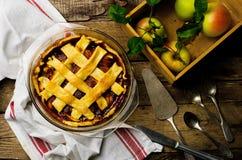 Apples and raisins pie Royalty Free Stock Photos