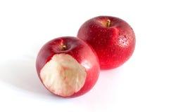 apples red Στοκ Εικόνες