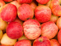 Apples red Stock Image