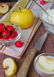 The apples and red berries. On the table Stock Images