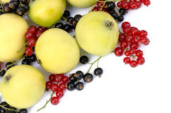 Apples with red and black currant Stock Photography