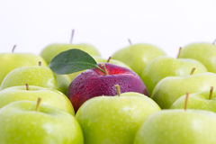 Apples Stock Photos