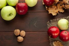 Apples on the rustic wooden table stock image