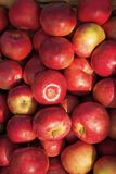 Apples red ripe fruits background texture. Apple harvest concept. Ripe organic fruits backdrop. Healthy nutrition royalty free stock photos