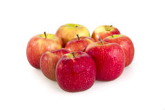 Apples, Royalty Free Stock Image