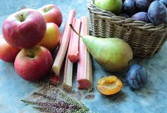 Apples rhubarb pears and plums Stock Image