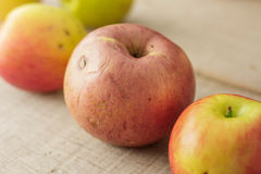 Apples rot on wooden floor. Royalty Free Stock Photo
