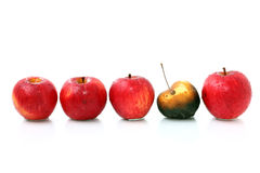 Apples in a row Royalty Free Stock Photography
