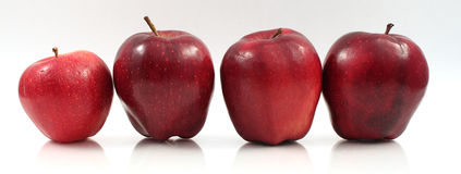 Apples in a row. Four red delicious apples lined up in a row Royalty Free Stock Images