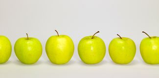 Apples in a row Stock Images
