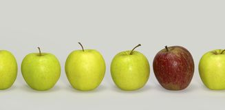 Apples in a row Stock Image