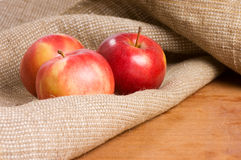 Apples on a sacking on a wooden table Stock Image
