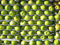 Apples for sale. Rows of apples for sale Stock Photos