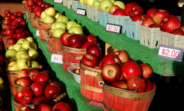 Apples for Sale. Rows of fresh picked red and green apples for sale at a farmer's market royalty free stock photo