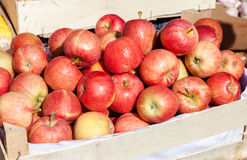 Apples for sale at the farmers market Royalty Free Stock Photos