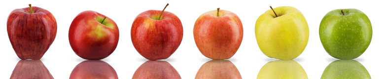 Apples sampler Royalty Free Stock Photography