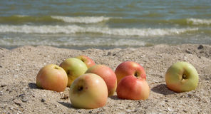 Apples on the sand Stock Photo