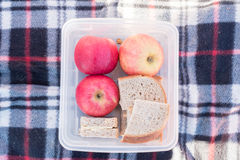 Apples and sandwich in lunchbox Stock Photos