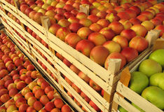 Apples in selling crates Stock Image