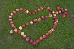 Apples in the shape of a heart Royalty Free Stock Images