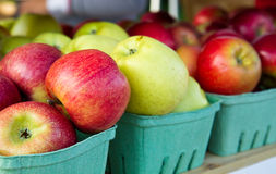 Apples on a shelf Royalty Free Stock Photos