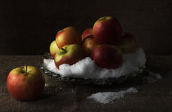 Apples on snow. Apples on a dish. The dish costs on a table Royalty Free Stock Photography