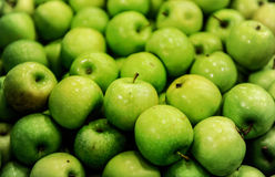 Apples sorting and packing. Delicious green apples and one red in packing tub at fruit warehouse Royalty Free Stock Photography