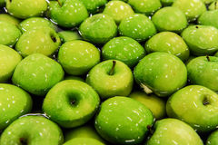 Apples sorting and packing. Green delicious apples in packing tub at fruit warehouse Royalty Free Stock Photo