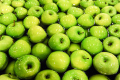 Apples sorting and packing. Green delicious apples in packing tub at fruit warehouse Stock Photography