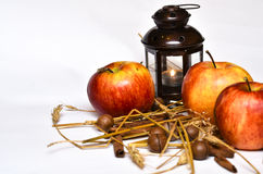 Apples and spices Royalty Free Stock Photography