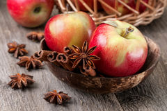 Apples with spices Royalty Free Stock Images
