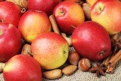 Apples, spices, nuts Royalty Free Stock Photo