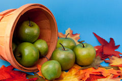 Apples Spilling out of Basket. Apples spilling out of a basket on fall leaves stock photography