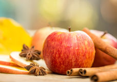 Apples with star anise. Autumn composition with leaves and apple Royalty Free Stock Photography