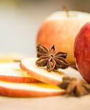 Apples with star anise. Autumn composition with leaves and apple Royalty Free Stock Photos