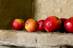 Apples still life. On stone Royalty Free Stock Images
