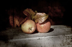 Apples still life Stock Photography