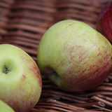 Apples. Stock of delicious green-red apples Stock Image