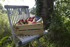 Apples, strawberries and pears in an old wooden crate Royalty Free Stock Image
