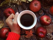 Apples and tea . stock photography