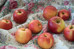 Apples on textile. Apples on flower pattern textile Stock Photography