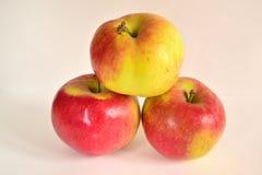 Яблоки -Apples Stock Photography