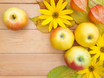Apples, topinambur flowers, physalis and yellow leaves Stock Photo