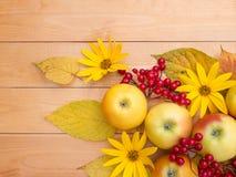 Apples, topinambur flowers, red viburnum berries and yellow leav Royalty Free Stock Images