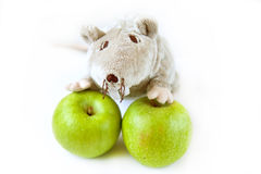Apples with toy. Tow apples with rat toy Stock Images