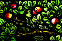 Apples in a tree (stained glass window) Stock Photography